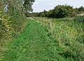 Towpath of the disused Grantham Canal - geograph.org.uk - 963094.jpg