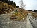 Tracks in Ardgartan Forest - geograph.org.uk - 1285773.jpg
