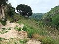 Trail Caria-Tropea06.jpg