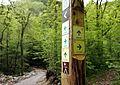 Trail sign in Čezsoča.jpg