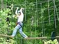 Tree climbing - Grimpe d'arbre.jpg