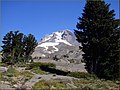 Treeline Flowers, Mount Hood, OR 9-1-13za (9726529528).jpg