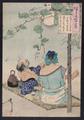 Tsukioka Yoshitoshi (188?) Tsuki hyaku shi - Yūgao dana nōryō zu.png