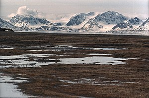 Svalbard and Jan Mayen - Both Svalbard and Jan Mayen consist almost entirely of Arctic wilderness, such as at Bellsund in Svalbard