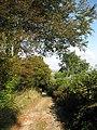 Two Moors Way to Scorriton - geograph.org.uk - 1541178.jpg