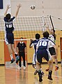 UFV men's volleyball vs Cap Nov 7 2014 04 (15141532543).jpg