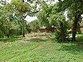 UNESCO Niokolo-Koba National Park Senegal (3687384586).jpg