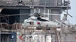 USS Antietam SH-60 Helicopter - Rear View.JPG