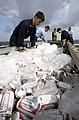 US Navy 030420-N-4308O-070 Sailors ice down beer during a Steel Beach Picnic on the flight deck aboard USS Harry S. Truman (CVN 75).jpg
