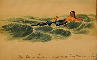 A Lima lady swimming with the Indian swimsuit in Chosil
