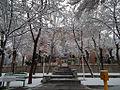 University of Arak in winter.jpg