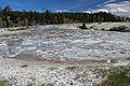 Upper Geyser Basin Yellowstone 26.JPG