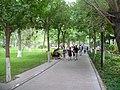 Urumqi People's Park (2).jpg