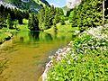 Vacheresse. Lac de Fontaine, (1340 mètres). 2015-06-20.JPG