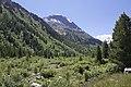 Vadret da Morteratsch - panoramio (38).jpg