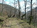 Valle de Burbia (419038604).jpg