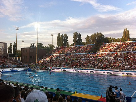 Hungary men's national water polo team is considered among the best in the world, holding the world record for Olympic golds and overall medals Vaterpolo Hungary vs Italy semifinal game2.jpg