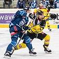 Vienna Capitals vs Fehervar AV19 -183.jpg