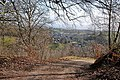 View from Viney Hill - geograph.org.uk - 1200168.jpg