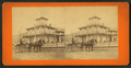 View of a person in a horse-drawn buggy in front of a house, from Robert N. Dennis collection of stereoscopic views.png