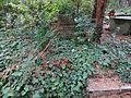 Waldfriedhof zehlendorf 01.jpg