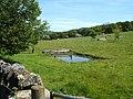 Water Jump - geograph.org.uk - 1319820.jpg