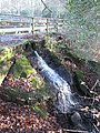 Waterfall, Burnham Beeches, Slough, UK.jpg