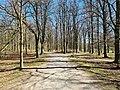 Weg in Park Theresienstein 20200406 05.jpg