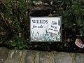 Who needs gardeners^ - geograph.org.uk - 1057645.jpg