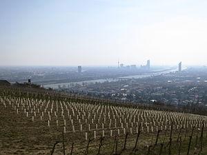 Wien-Nussdorf Nussberg März-2013 IMG 0236.JPG