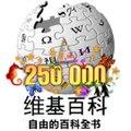 Wiki250000 simpchinese public.jpg