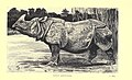 Wild beasts and their ways (Plate 18) (6505688029).jpg