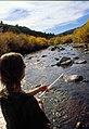 Wild trout project e walker river bridgeport0073 (26249940806).jpg