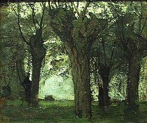 Willow trees on the Gein