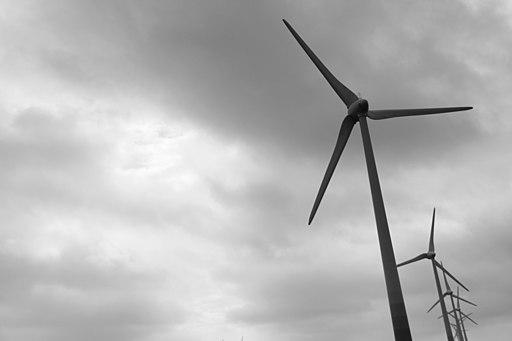 Windmills (28494239)