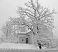 Winter - panoramio - Bengt Nyman (2).jpg