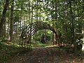 Woodland Arch - geograph.org.uk - 60102.jpg