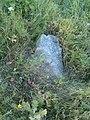 Woynillowicz family hill in Sawiczy - gravestone 5.jpg