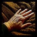 Wrinkled - Flickr - Stiller Beobachter.jpg