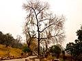 Wuchang Simenkou Shangquan, Wuchang, Wuhan, Hubei, China, 430000 - panoramio (43).jpg