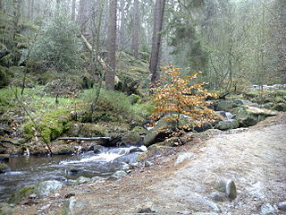 Wyming Brook River in South Yorkshire, England