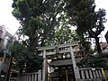 Yebisu-jinja by sun summer in Ebisu, Tokyo.jpg