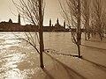Zaragoza - Crecida del Ebro - 20150328 (1).jpg
