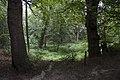 """Zicht op de bron van de beek """"De Oorsprong"""", in het bos - Unknown - 20537003 - RCE.jpg"""
