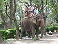 Zoo Kathmandu Nepal (5086465528).jpg