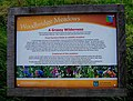 """A Grassy Wilderness"" information board, Woodbridge Meadows, Guildford - geograph.org.uk - 1447790.jpg"