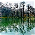 ^ 6 - ombre proiettate al parco di Racconigi - panoramio.jpg