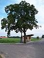 Číčová, autobusová zastávka a kříž.jpg