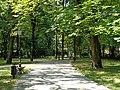 Łódź-path in Źródliska Park.jpg