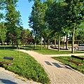 Łuków, Park Miejski 1.jpg